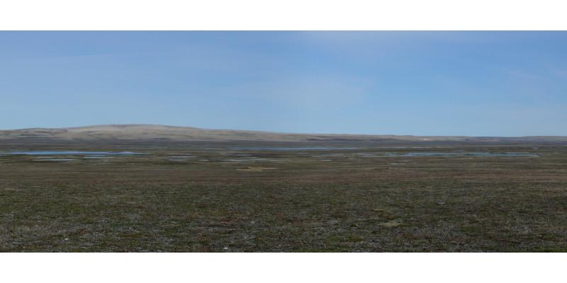 Hügelige feuchte Landschaft vor blauem Himmel