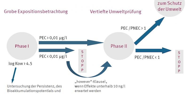 Ablaufschema einer Umweltverträglichkeitsprüfung für Arzneimittel von der groben Expositionsschätzung bis zur vertieften Umweltprüfung
