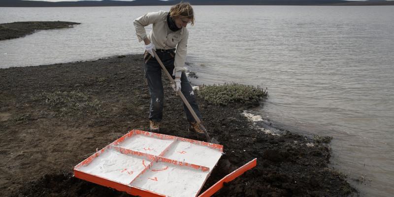 Die Künstlerin steht an Ufer eines Sees und nimmt eine Bodenprobe.
