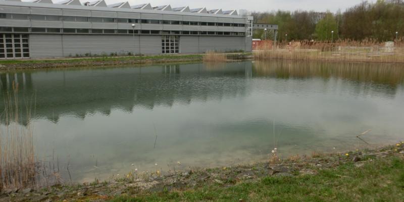 Ein Speicherteich im Vordergrund, dahinter steht ein graues Gebäude