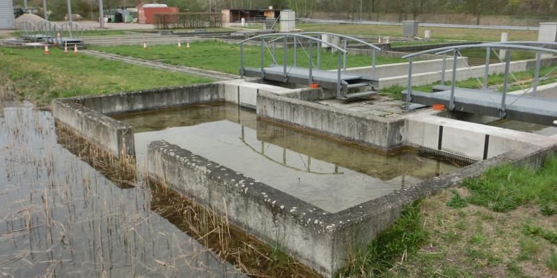Außenbecken dient als Wasserfilter