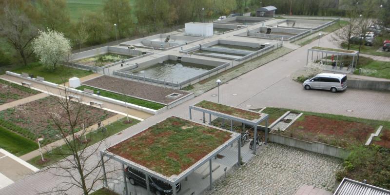 Fred-Becken für die Fischaufzucht auf dem Gelände des UBA in Berlin-Marienfelde
