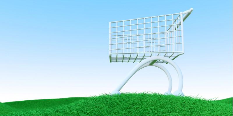 Symbolbild: Einkaufswagen auf grüner Wiese