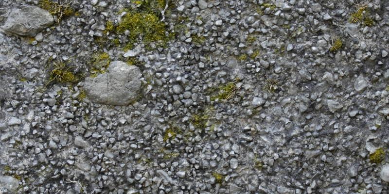 Nahaufnahme eines Bodenabdrucks aus Pflanzen, Schotter und Steinen