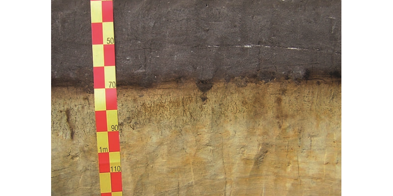Cross section of the soil type grey plaggic anthrosol