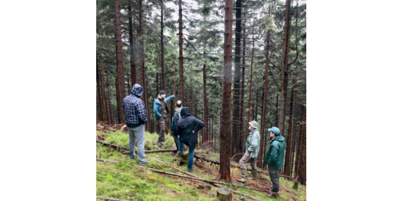 Vier Männer stehen im Wald, einer zeigt auf eine Stelle zwischen den Bäumen.