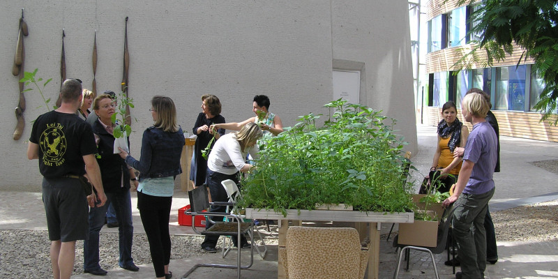 Forum des UBA: Garteninstallation mit hochgewachsenen Pflanzen und Menschen, die diese besichtigen