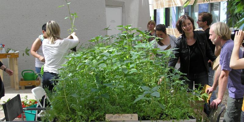 Forum des UBA: Garteninstallation mit hochgewachsenen Pflanzen und Menschen, die diese abholen