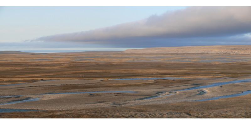 Braune karge Landschaft mit einigen Wasserstellen