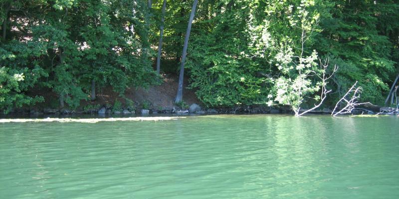 Blick über den Pinnower See