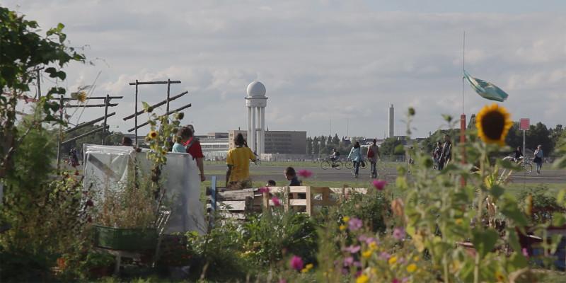 Ein Blumengarten direkt am Rand des Tempelhofer Flugfelds in Berlin, das als Parkt genutzt wird.