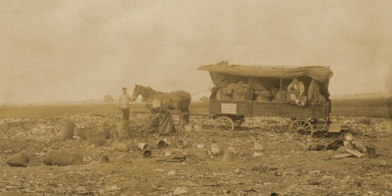 Anfahrt von Abfallsäcken aus dem Wechselbodensystem mit dem Pferdewagen