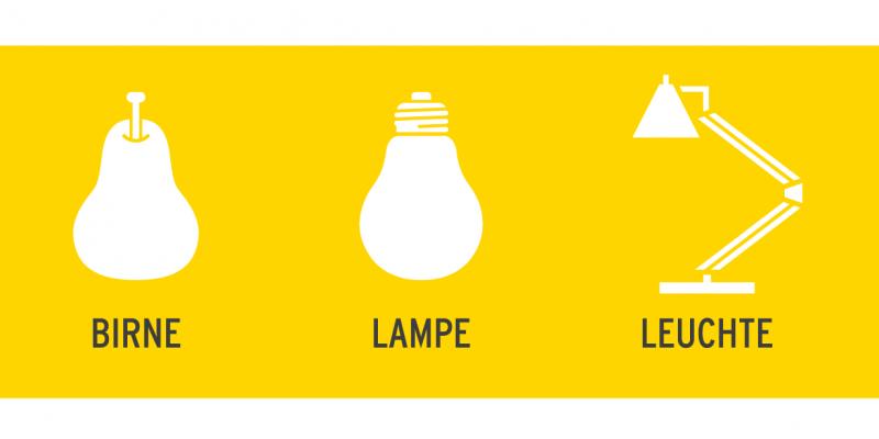 Schaubild stellt grafisch den Unterschied zwischen einer Glühlampe, einer Leuchte und einer essbaren Birne da, um die Begriffe zu erläutern.