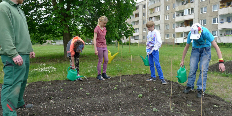 Kinder pflanzen in Dessau ein Blumenbeet.