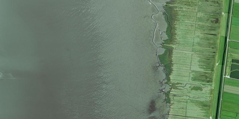 Luftbild Jadebusen, Küstenstreifen und Watt