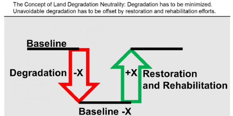 degradation neutrality Concept