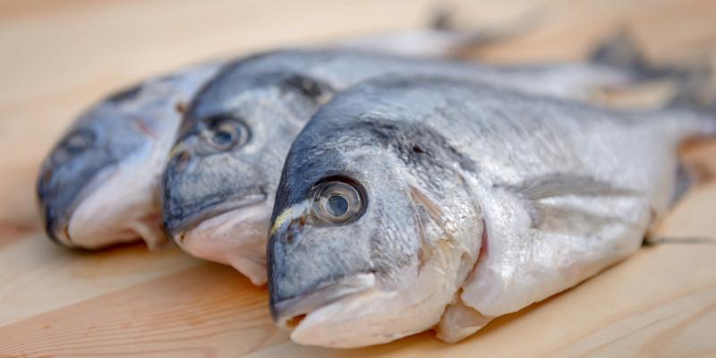 Drei Fische