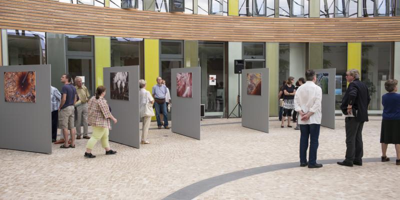Aus New York nach Dessau: 30 großformatige Fotografien zeigt Fair im Umweltbundesamt