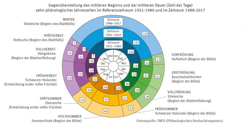 Die Grafik zeigt eine phänologische Uhr. Konzentrisch sind drei Zeiträume 1951 bis 1980 und 1981 bis 2010 und 1988 bis 2017 abgetragen. Dargestellt sind die Veränderung der folgenden zehn durch Wildpflanzen repräsentierten Leitphasen.