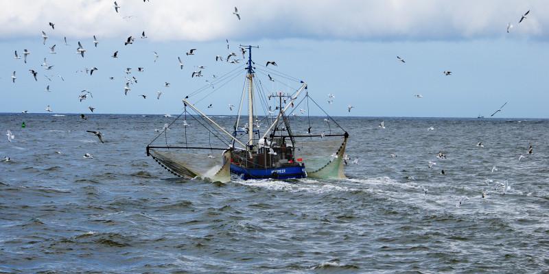 Kleines Fischerboot mit ausgelegten Netzen auf dem Meer.
