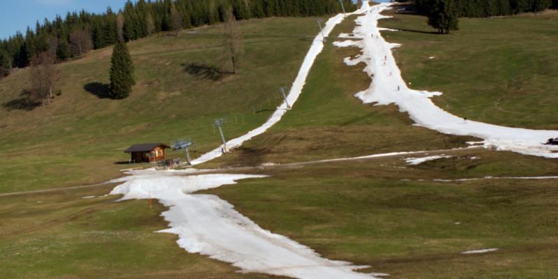 Künstlich beschneite Skipisten in grüner Landschaft.
