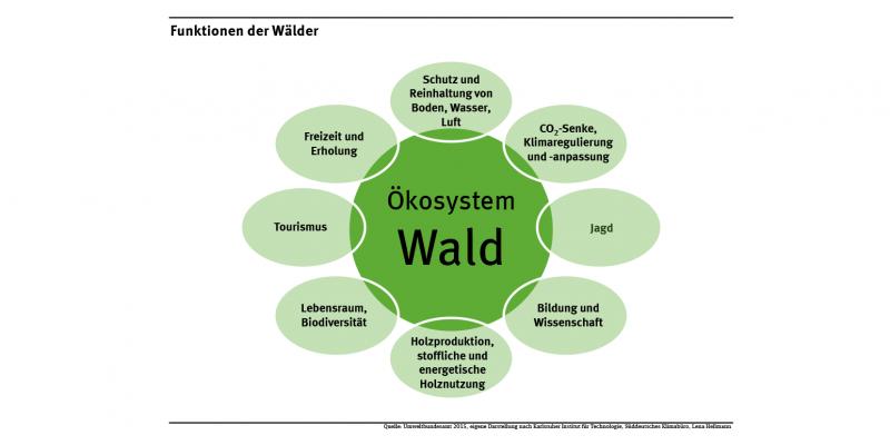 Das Schaubild zeigt verschiedene Bereiche, in denen der Wald Funktionen für Mensch und Umwelt erfüllt. Dazu gehören die Bereiche Wasserschutz, Klimaschutz, Bodenschutz, Biodiversität, Lebensraum sowie Freizeit und Erholung.