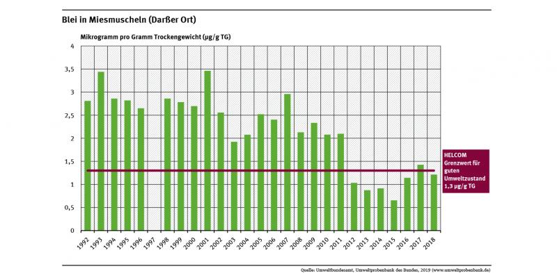 Der Bleigehalt in Miesmuschelfleisch am Darßer Ort schwankte zwischen den Jahren 1992 und 2018. Aber insgesamt gesehen sank die Bleibelastung seit Anfang der 1990er Jahre um etwa 60 Prozent.