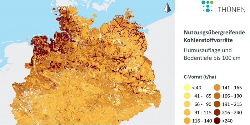 Das Thünen-Institut hat aus den bundesweiten Bodenzustandserhebungen im Wald und in der Landwirtschaft eine nutzungsübergreifende Karte der Kohlenstoffvorräte erstellt. In Nord- und Süddeutschland treten die Gebiete mit den höchsten Kohlenstoffvorräten im Boden in dunkelbraunen Farben hervor. Dies sind Moorböden und weitere organische Böden, die es besonders zu schützen gilt. Sie speichern klimarelevanten Kohlenstoff.