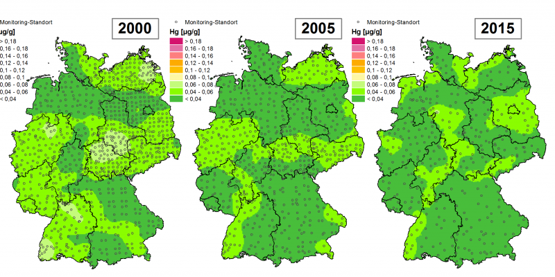 Die Grafik zeigt die Höhe der Bioakkumulation von Quecksilber und Entwicklung dieser Konzentration von 1995 bis 2015/16 in Deutschland.