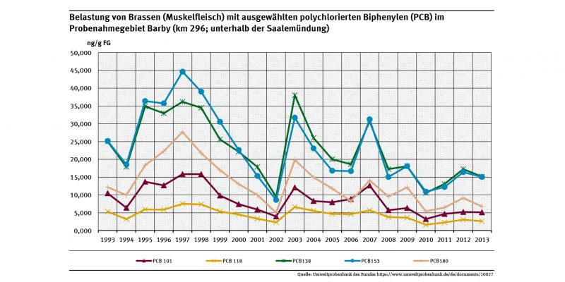Polychlorierte Biphenyl (PCB)-Belastungen in Muskelfleisch von Brassen im Mündungsgebiet der Saale in die Elbe in Sachsen-Anhalt zeigte einen abnehmenden Trend, der 2003 unterbrochen wurde, Ursache könnte das Augusthochwasser der Elbe 2002 gewesen sein.