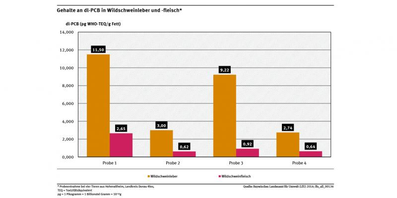 In Wildschweinleber lag eine deutlich höhere Akkumulation als in Wildschwein Fleisch vor.