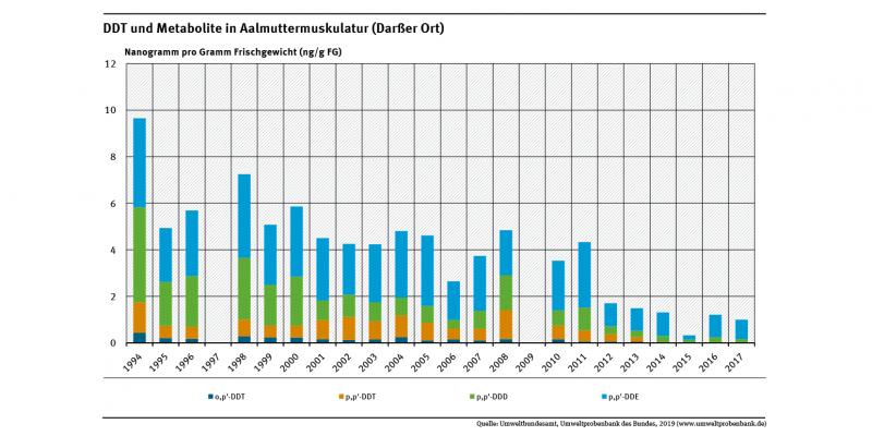 Die Belastung der Muskulatur von Aalmuttern am Darßer Ort mit dem Insektizid DDT und zwei seiner Abbauprodukte sank im Zeitraum von 1994 bis 2017 um mehr als 90 Prozent.