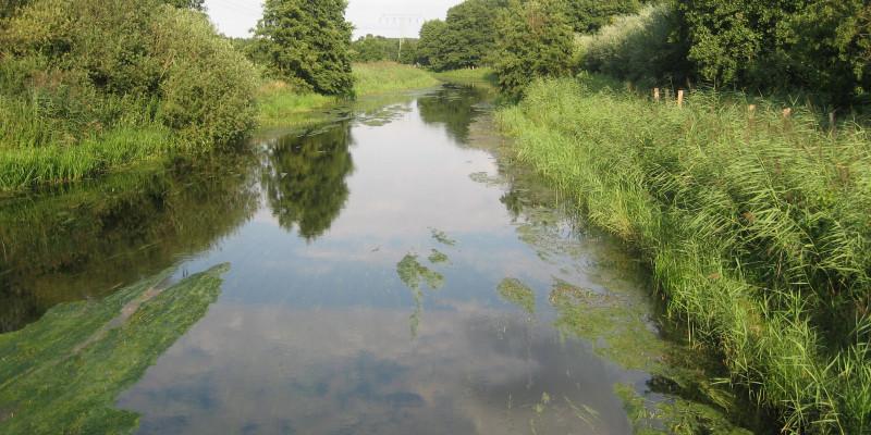Ein Fluss mit grünem Ufer rechts und links bei dunstigem Wetter