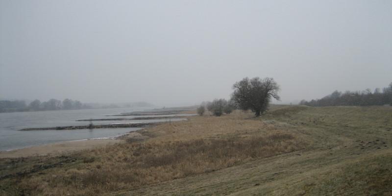 Neblige Ansicht auf einen Flusslauf mit Buhnen