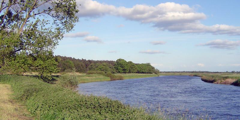 Die Biegung eines großen Flusses mit grünem Uferbewuchs