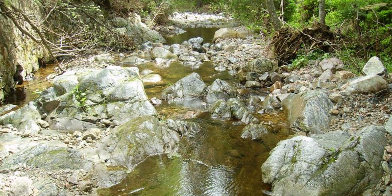 Kleiner Gebirgsbach, in dem viele Steine und große Felsen liegen