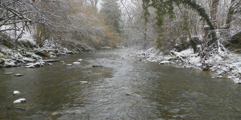 Flusslauf im Winter mit leicht verschneiten Steinen und Bäumen am Ufer