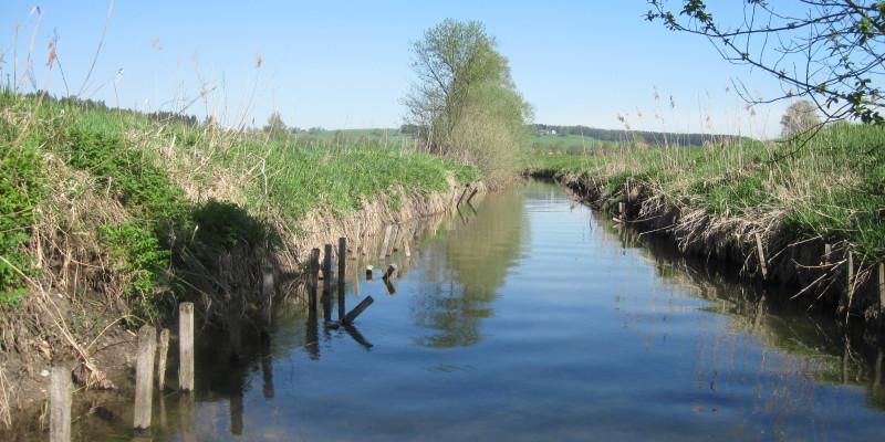 Bachverlauf mit klarem Wasser und blauem Himmel. Am Ufer wächst nur Gras.