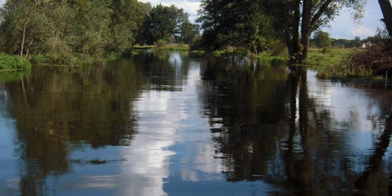 Breiter Fluss mit sehr glattem Wasser, in dem sich die Wolken und die Bäume am Ufer spiegeln.