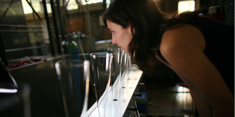 a young woman takes a smell at one of different glass plungers which are set out in a row