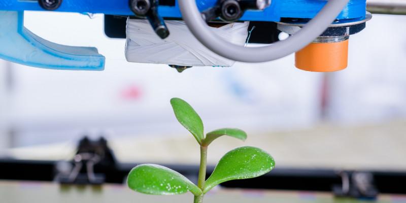 Ein Plastikbaum wird in einem 3D-Drucker produziert