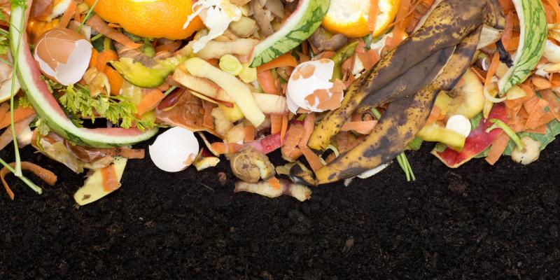 Hochwertige Verwertung: der Weg vom Bioabfall zum Kompost