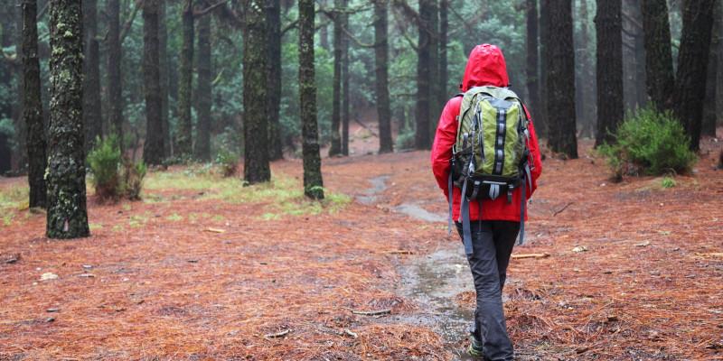 Eine Person mit Outdoorkleidung läuft durch einen regnerischen Wald.