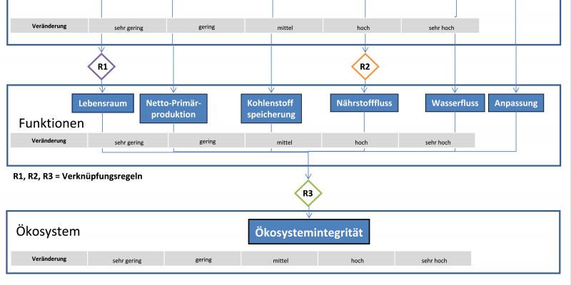 Grundschema zur Beurteilung der Ökosystemintegrität