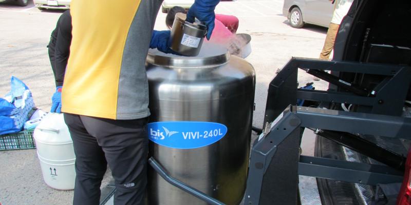 Cryogenic Storage at filed pine needle at the Korean ESB