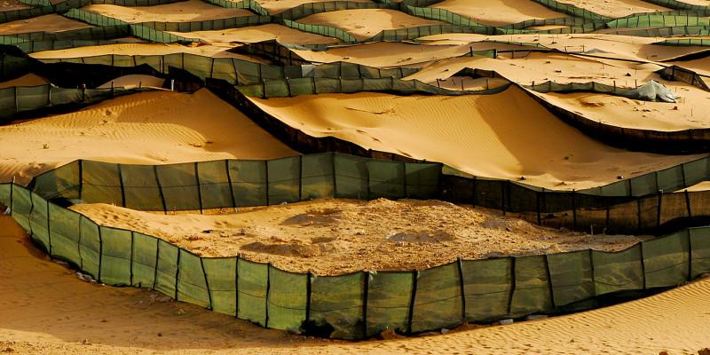 Kunststoffnetze zäunen Flächen von Sanddünen ein.