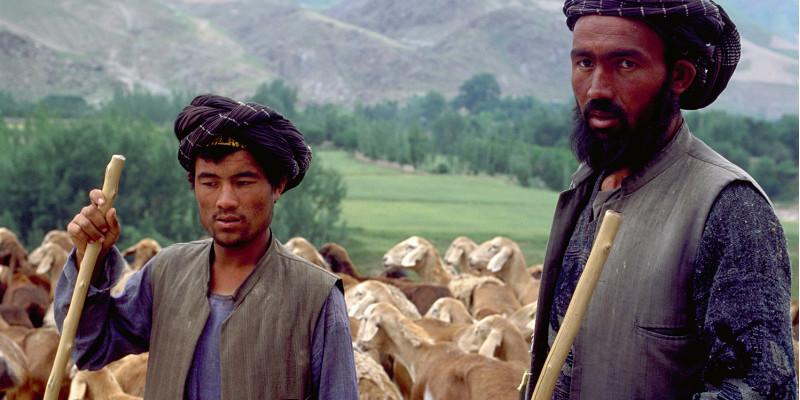 Zwei Viehhalter vor einer Herde Ziegen