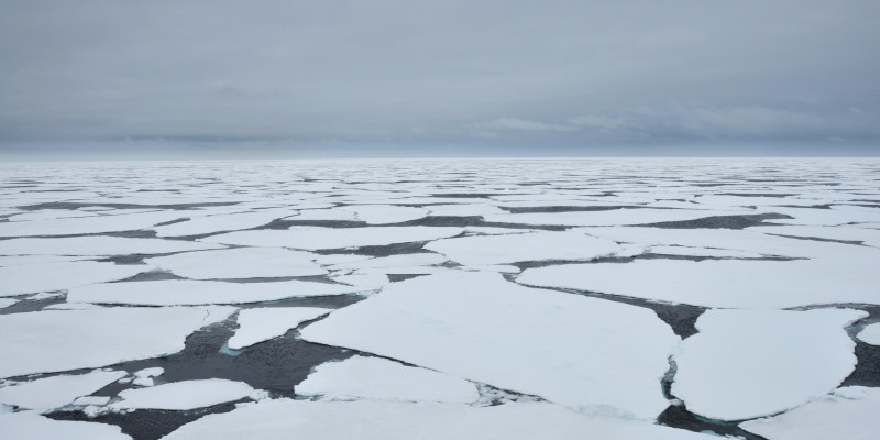 A wide belt of sea ice forms around the continent in winter.