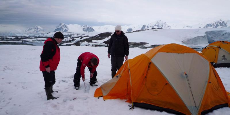 Vor einem in der Antarktis aufgebautem Zelt stehen drei Personen. Sie versuchen die Heringe in den eisigen Boden zu treiben.
