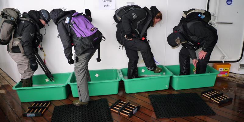 4 Personen waschen sich auf dem Schiff die Schuhe in flachen Wasserbehältern. Vor den Behältern liegen Abtrittsmatten.